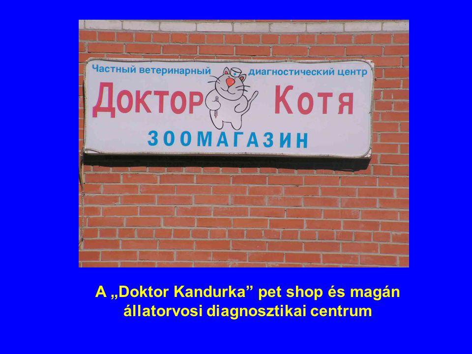 """A """"Doktor Kandurka pet shop és magán állatorvosi diagnosztikai centrum"""