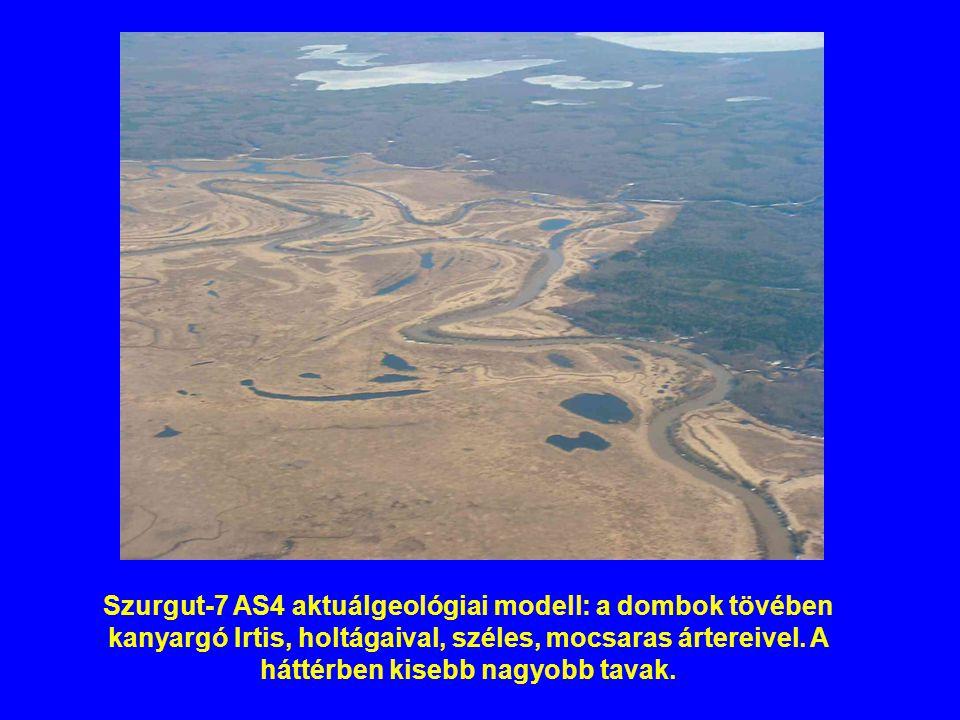 Szurgut-7 AS4 aktuálgeológiai modell: a dombok tövében kanyargó Irtis, holtágaival, széles, mocsaras ártereivel. A háttérben kisebb nagyobb tavak.