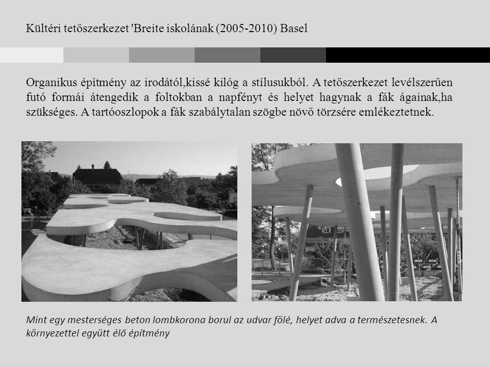 Kültéri tetőszerkezet Breite iskolának (2005-2010) Basel Organikus építmény az irodától,kissé kilóg a stílusukból.