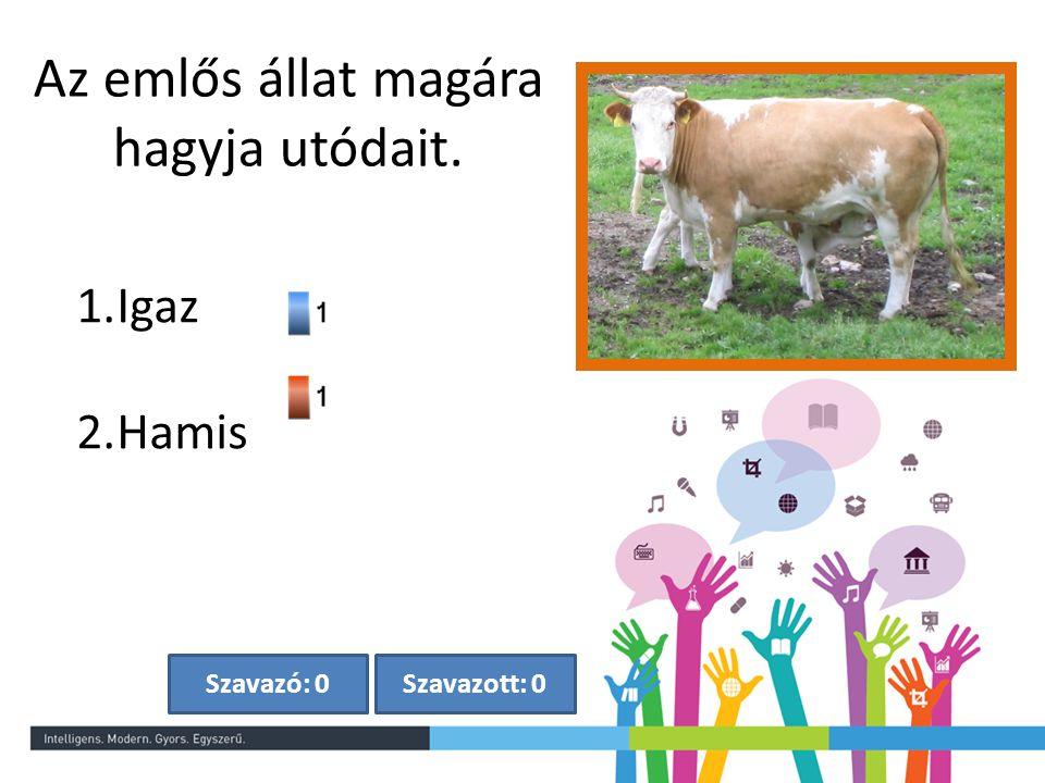 Az emlős állat tojással szaporodik. Szavazott: 0Szavazó: 0 1.Igaz 2.Hamis
