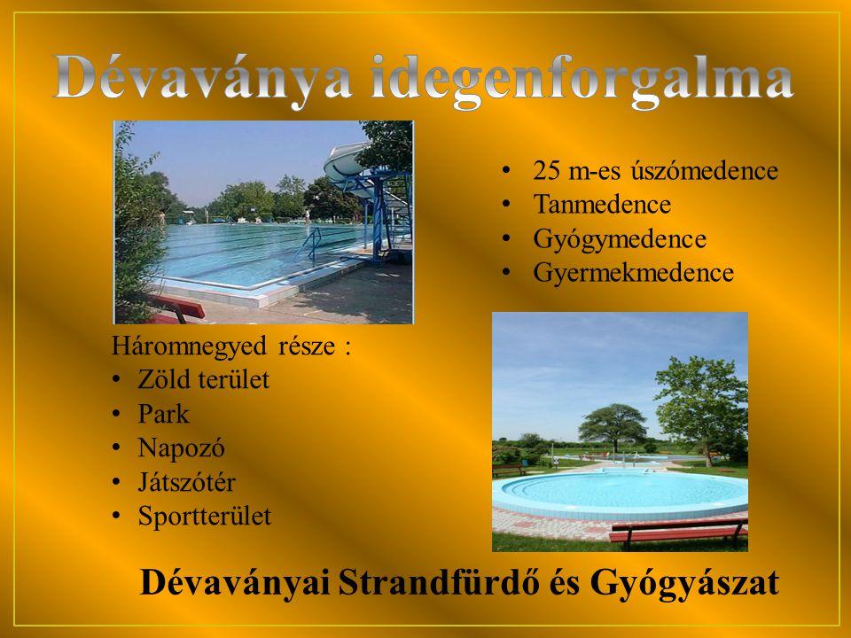 Dévaványai Strandfürdő és Gyógyászat Háromnegyed része : • Zöld terület • Park • Napozó • Játszótér • Sportterület • 25 m-es úszómedence • Tanmedence