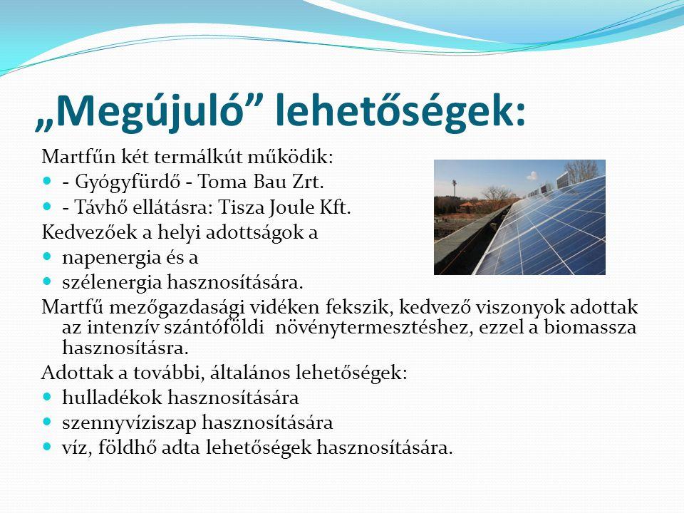 """""""Megújuló"""" lehetőségek: Martfűn két termálkút működik:  - Gyógyfürdő - Toma Bau Zrt.  - Távhő ellátásra: Tisza Joule Kft. Kedvezőek a helyi adottság"""