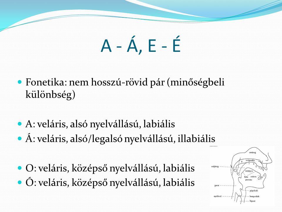 A - Á, E - É  Fonetika: nem hosszú-rövid pár (minőségbeli különbség)  A: veláris, alsó nyelvállású, labiális  Á: veláris, alsó/legalsó nyelvállású, illabiális  O: veláris, középső nyelvállású, labiális  Ó: veláris, középső nyelvállású, labiális