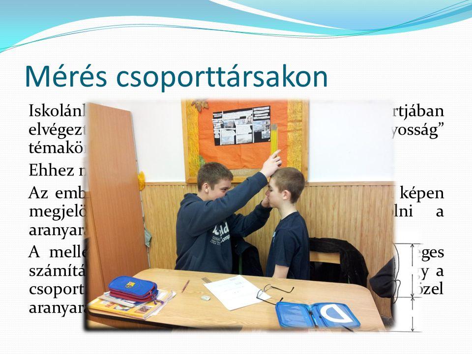 Mérés csoporttársakon Iskolánkban a 7.
