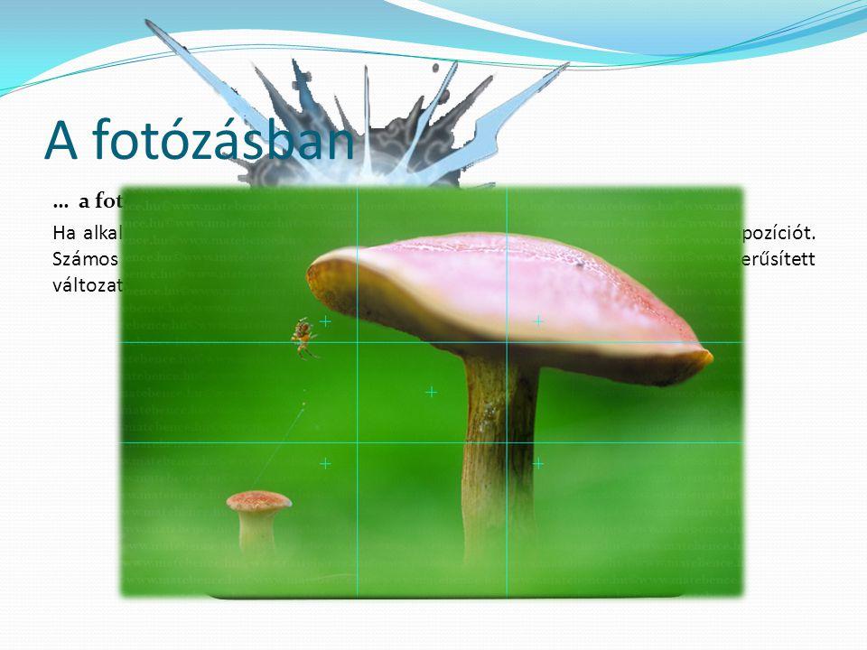 A fotózásban … a fotózásban Ha alkalmazzuk az aranymetszés szabályát, harmonikusnak fogjuk látni a kompozíciót.
