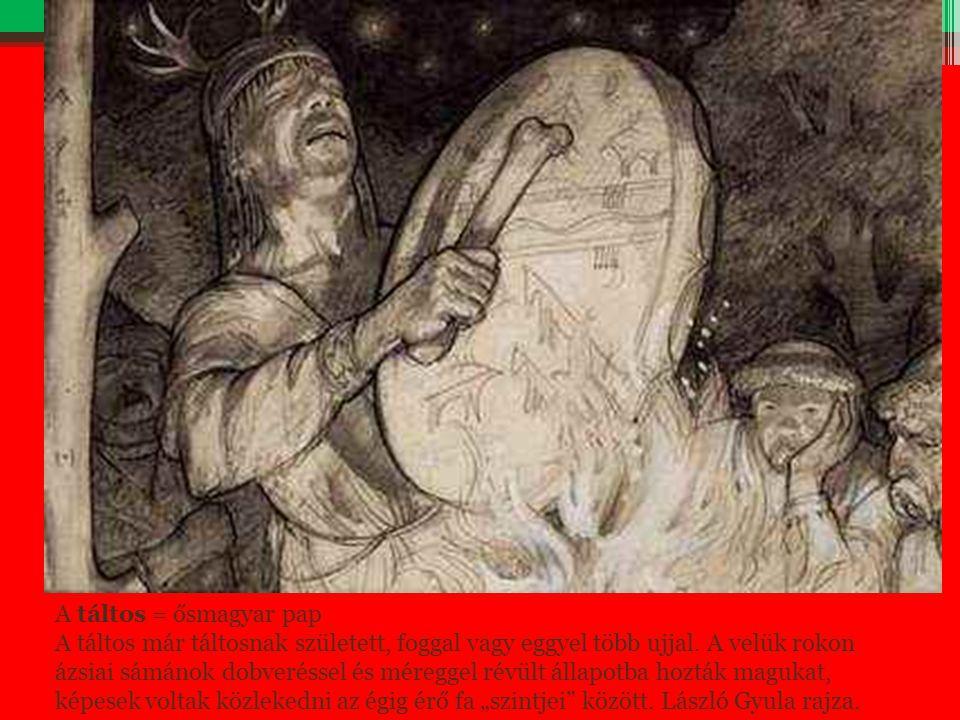 A táltos = ősmagyar pap A táltos már táltosnak született, foggal vagy eggyel több ujjal. A velük rokon ázsiai sámánok dobveréssel és méreggel révült á