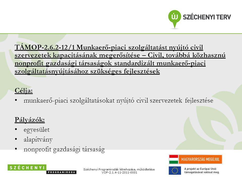 TÁMOP-2.6.2-12/1 Munkaerő-piaci szolgáltatást nyújtó civil szervezetek kapacitásának megerősítése – Civil, továbbá közhasznú nonprofit gazdasági társa
