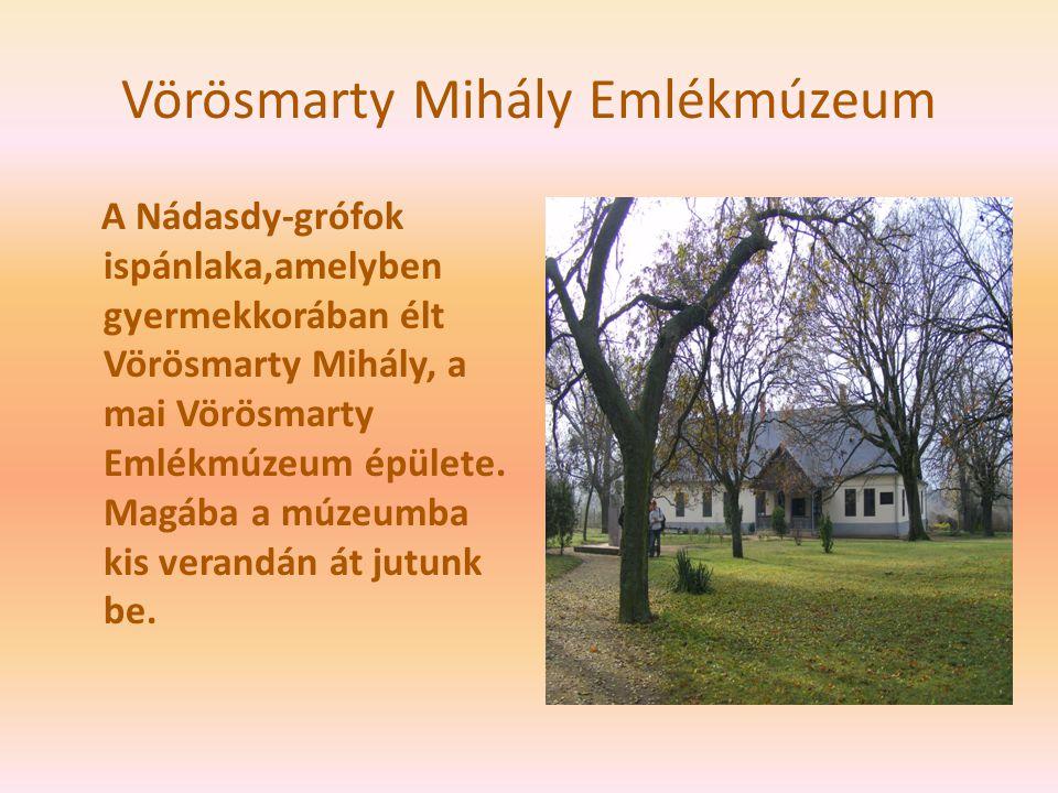Vörösmarty Mihály Emlékmúzeum A Nádasdy-grófok ispánlaka,amelyben gyermekkorában élt Vörösmarty Mihály, a mai Vörösmarty Emlékmúzeum épülete. Magába a