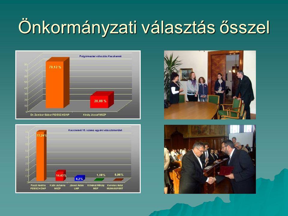 Önkormányzati választás ősszel