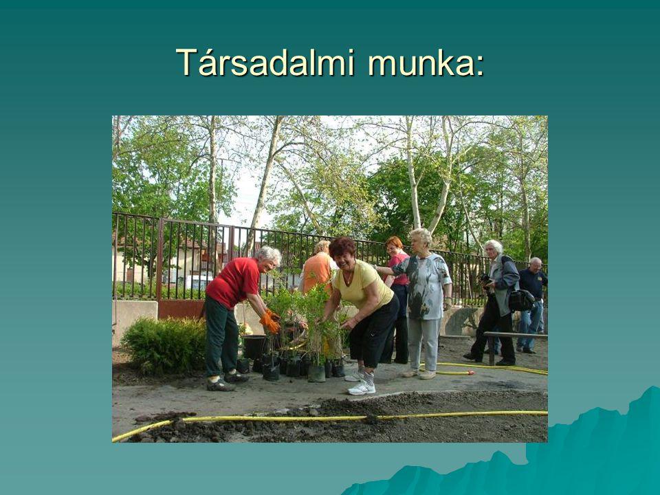 Társadalmi munka: