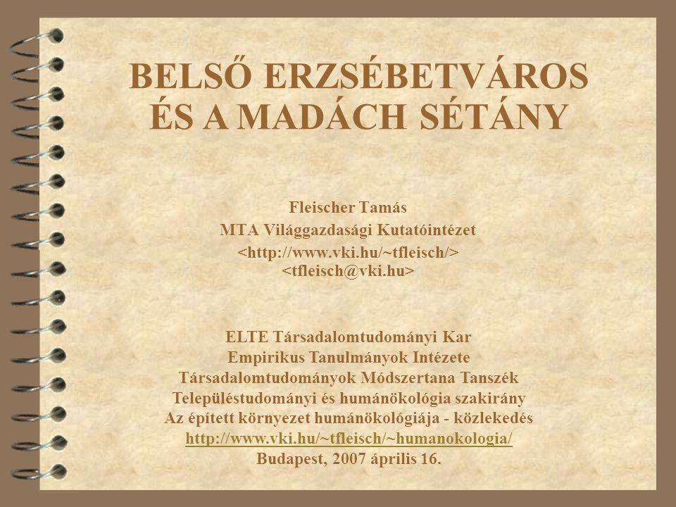 Fleischer Tamás MTA Világgazdasági Kutatóintézet ELTE Társadalomtudományi Kar Empirikus Tanulmányok Intézete Társadalomtudományok Módszertana Tanszék
