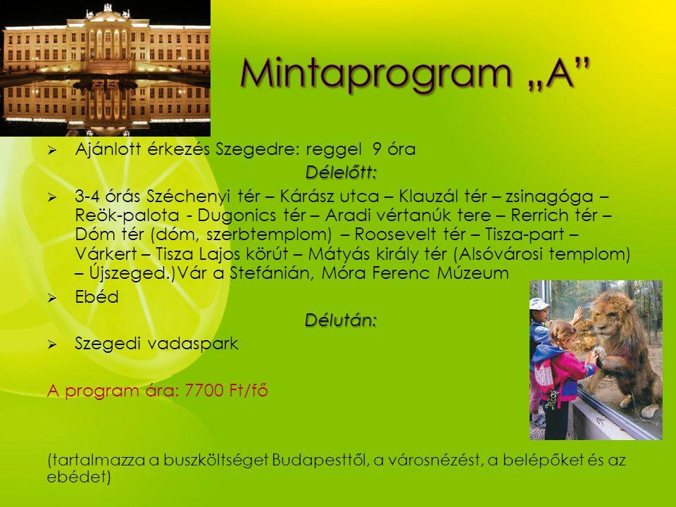 Ajánlott érkezés Szegedre: reggel 9 óraDélelőtt:  3-4 órás Széchenyi tér – Kárász utca – Klauzál tér – zsinagóga – Reök-palota - Dugonics tér – Ara