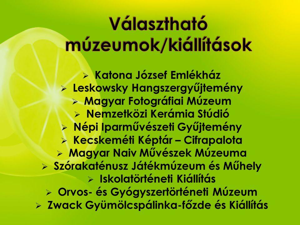  Katona József Emlékház  Leskowsky Hangszergyűjtemény  Magyar Fotográfiai Múzeum  Nemzetközi Kerámia Stúdió  Népi Iparművészeti Gyűjtemény  Kecs