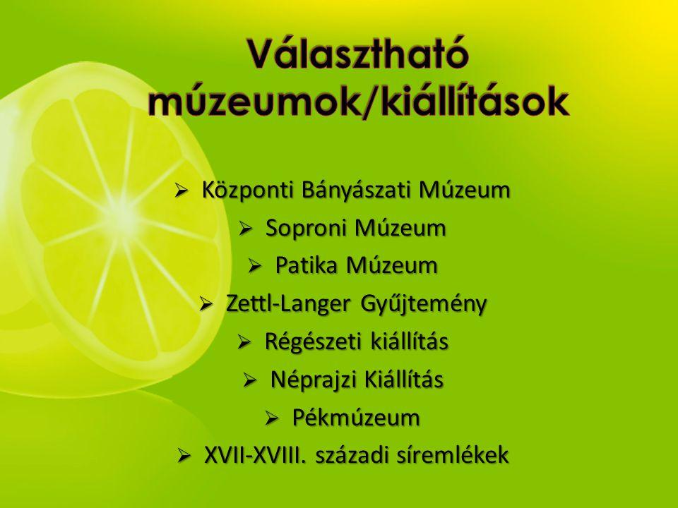  Központi Bányászati Múzeum  Soproni Múzeum  Patika Múzeum  Zettl-Langer Gyűjtemény  Régészeti kiállítás  Néprajzi Kiállítás  Pékmúzeum  XVII-