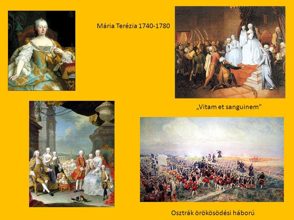 """Mária Terézia 1740-1780 """"Vitam et sanguinem"""" Osztrák örökösödési háború"""