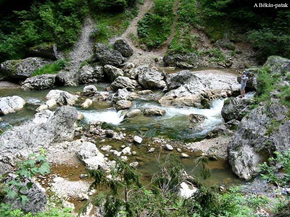 A Békás-patak