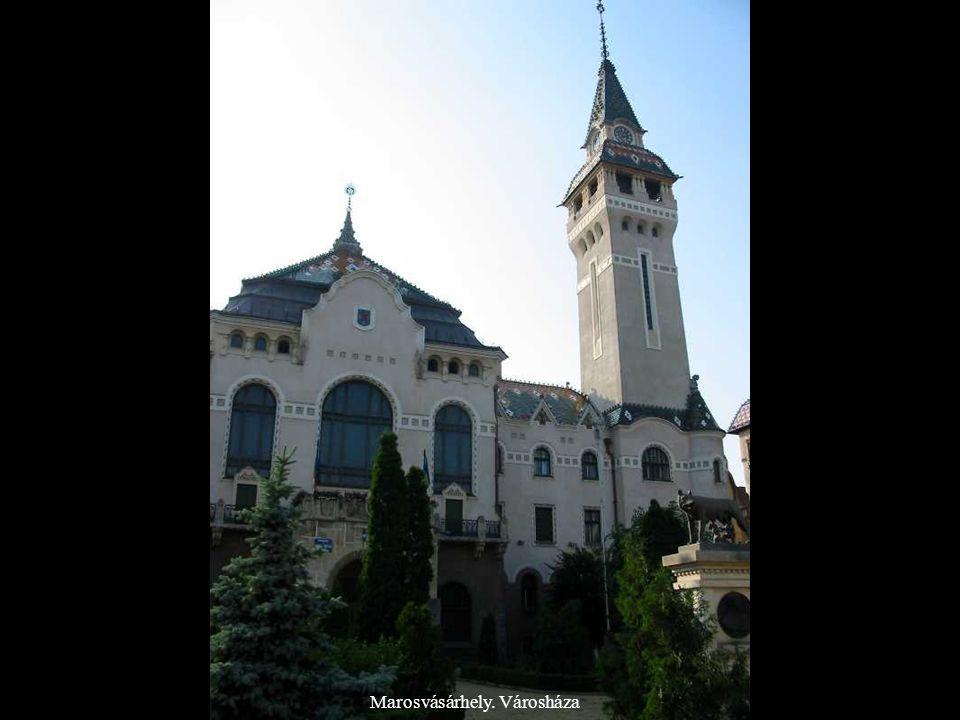 Fehéregyháza. A segesvári csata emlékműve