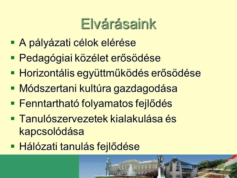 Elvárásaink  A pályázati célok elérése  Pedagógiai közélet erősödése  Horizontális együttműködés erősödése  Módszertani kultúra gazdagodása  Fenn