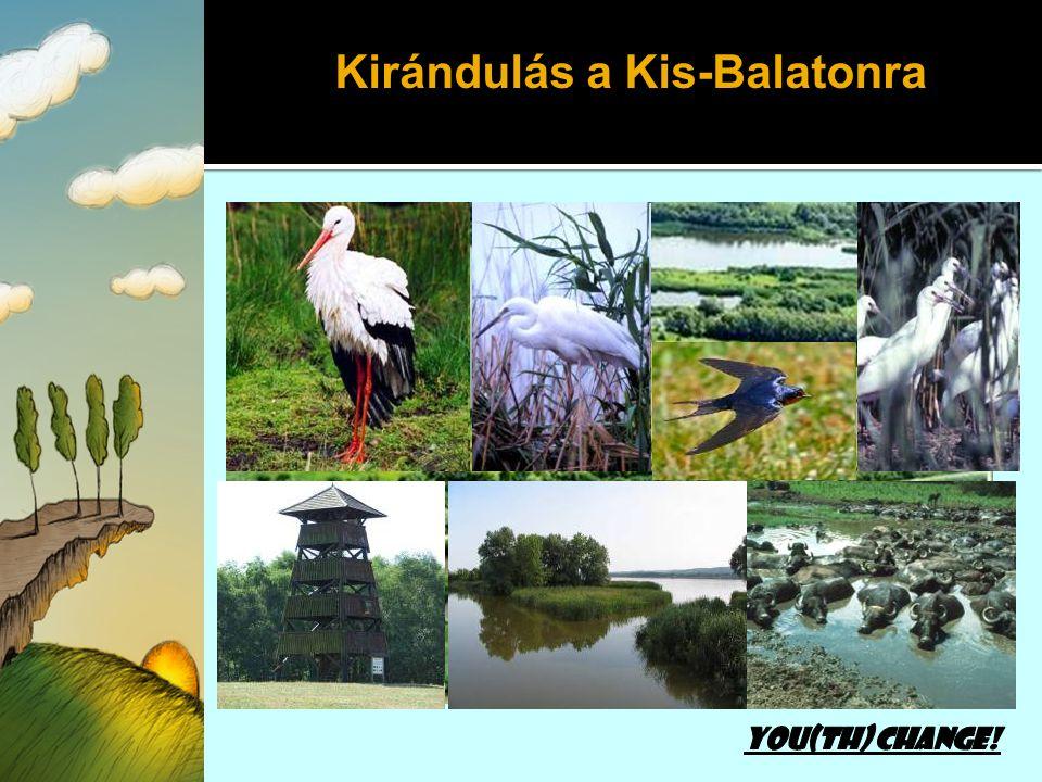Kirándulás a Kis-Balatonra
