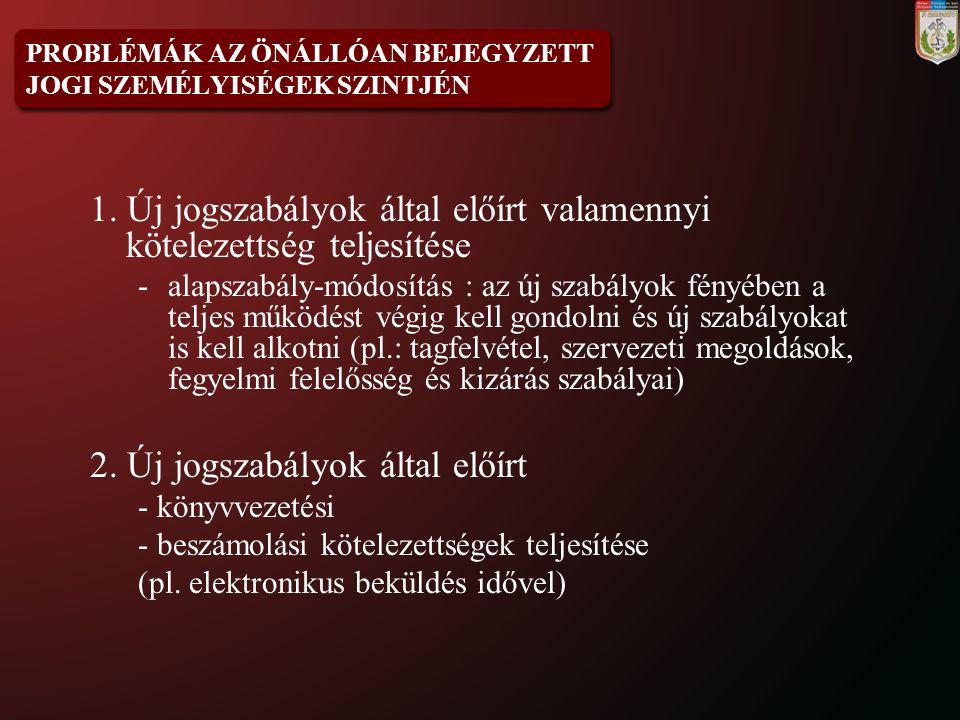 PROBLÉMÁK A SZÁRMAZTATOTT JOGI SZEMÉLYISÉGŰ ALAPSZERVEZETEK SZINTJÉN 1.