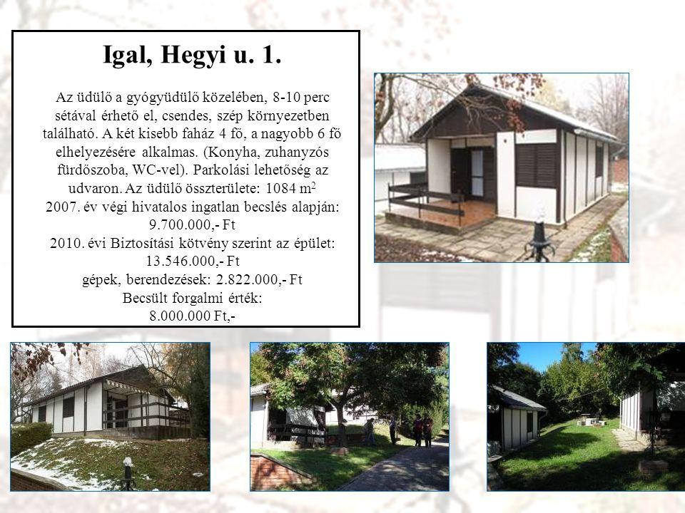 Hajdúszoboszló, Pávai Vajna u.41. Kétszintes épület nagy fedett terasszal, kerttel.