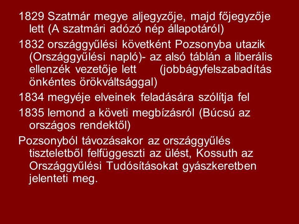 1829 Szatmár megye aljegyzője, majd főjegyzője lett (A szatmári adózó nép állapotáról) 1832 országgyűlési követként Pozsonyba utazik (Országgyűlési na