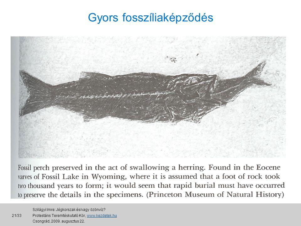 Gyors fosszíliaképződés 21/33 Szilágyi Imre: Jégkorszak és/vagy özönvíz.