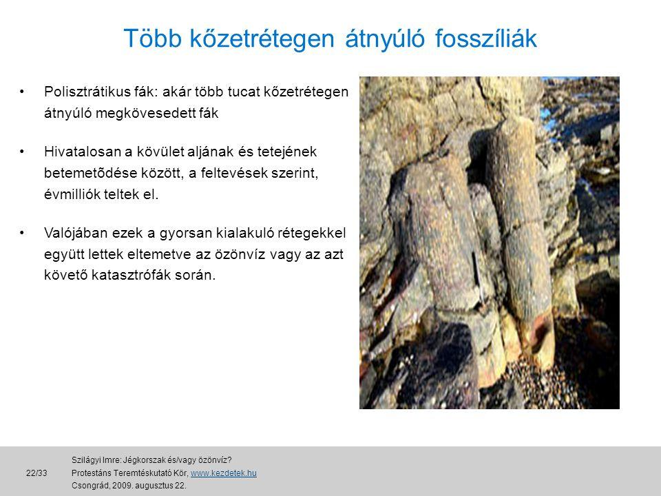 Több kőzetrétegen átnyúló fosszíliák •Polisztrátikus fák: akár több tucat kőzetrétegen átnyúló megkövesedett fák •Hivatalosan a kövület aljának és tetejének betemetõdése között, a feltevések szerint, évmilliók teltek el.