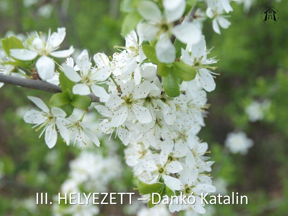 III. HELYEZETT – Dankó Katalin