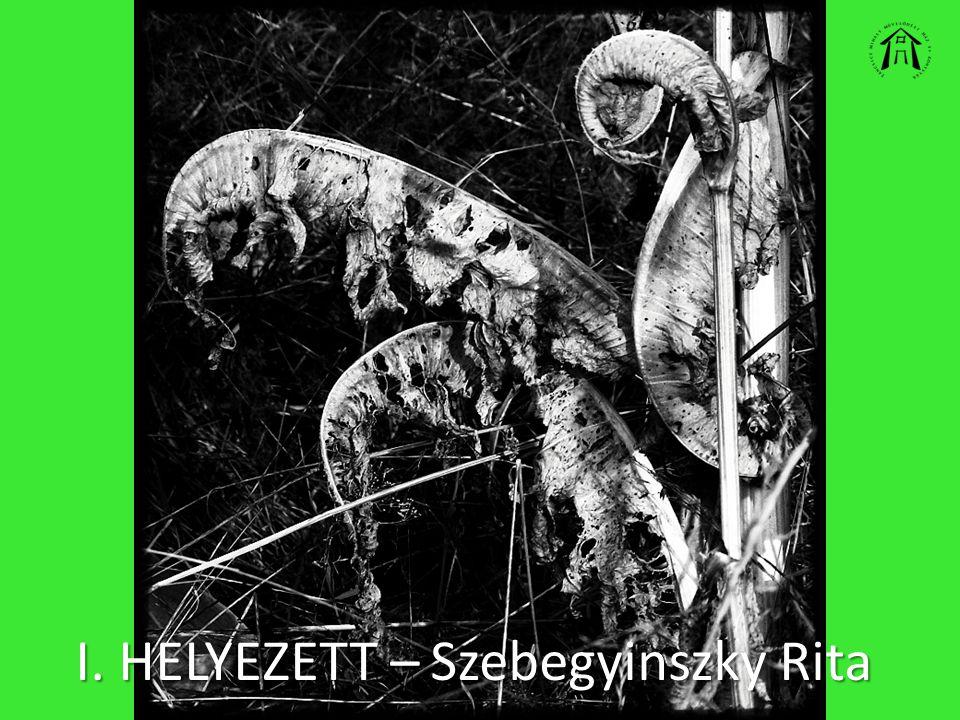 I. HELYEZETT – Szebegyinszky Rita