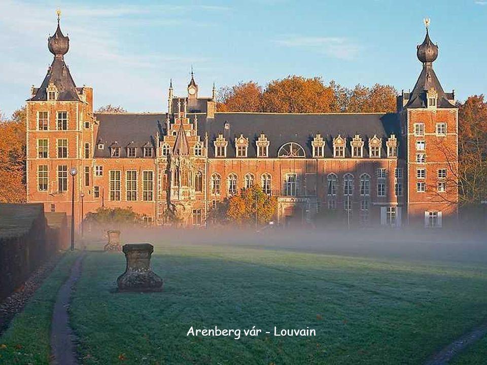 • Leuven (Leuven holland, Löwen német, francia Louvain, a vallon Lovin) egy város Belgiumban.