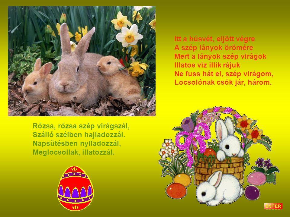Itt a húsvét, eljött végre A szép lányok örömére Mert a lányok szép virágok Illatos víz illik rájuk Ne fuss hát el, szép virágom, Locsolónak csók jár, három.