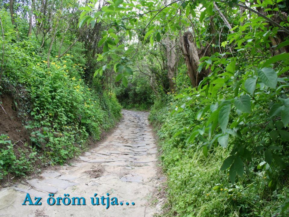 Az öröm útja…
