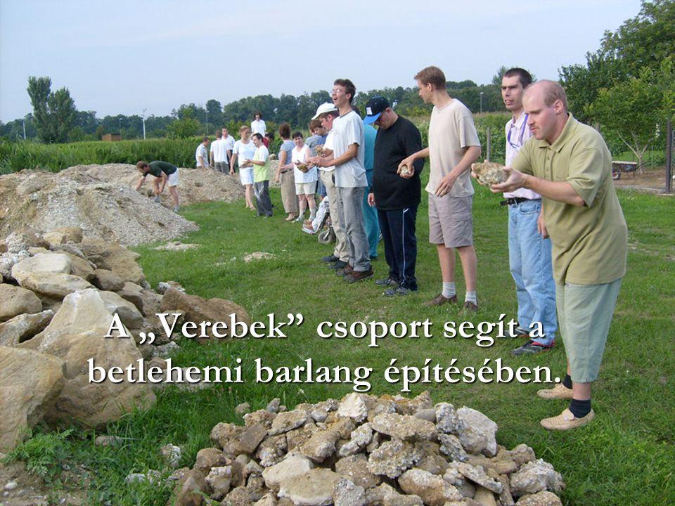 """A """"Verebek"""" csoport segít a betlehemi barlang építésében."""