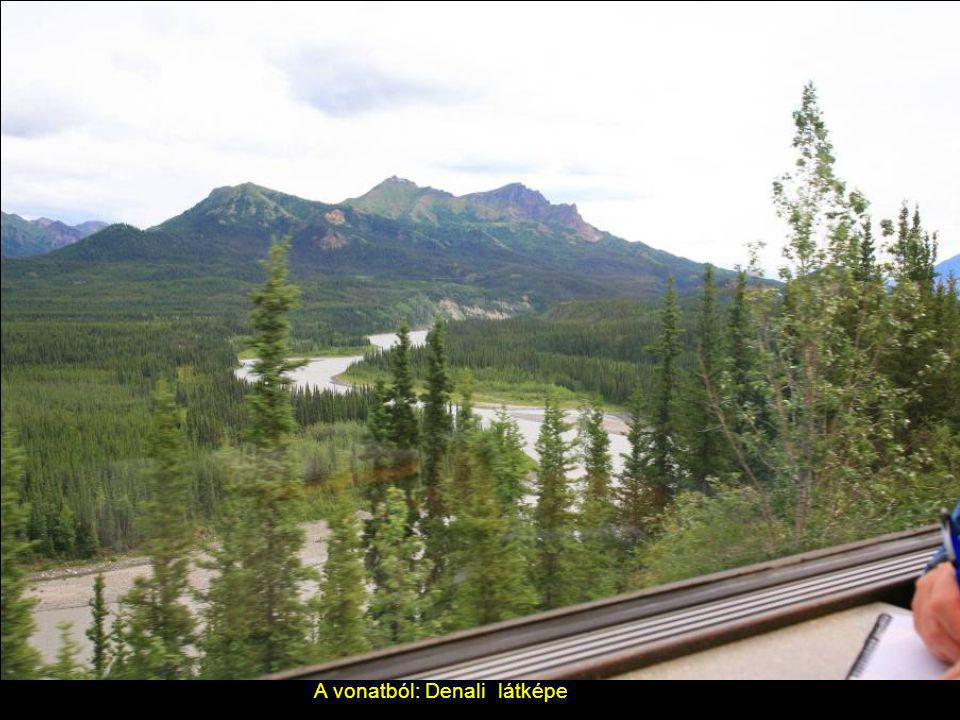 Luxus vonat Denali és Anchorage között