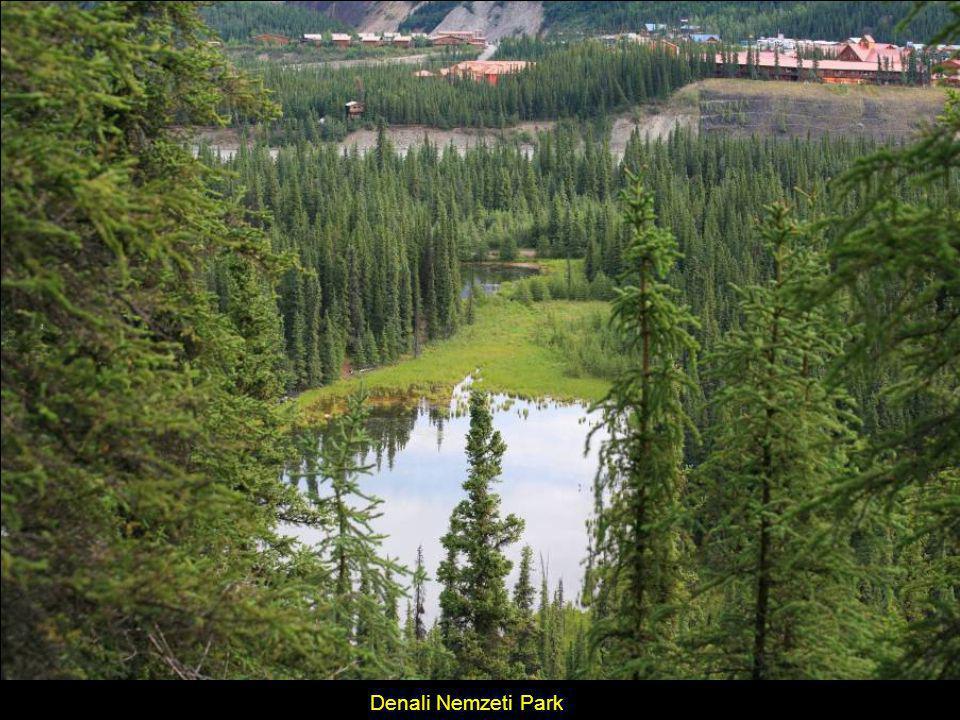 Fairbanks, tipikus folyóparti, családi nyaraló