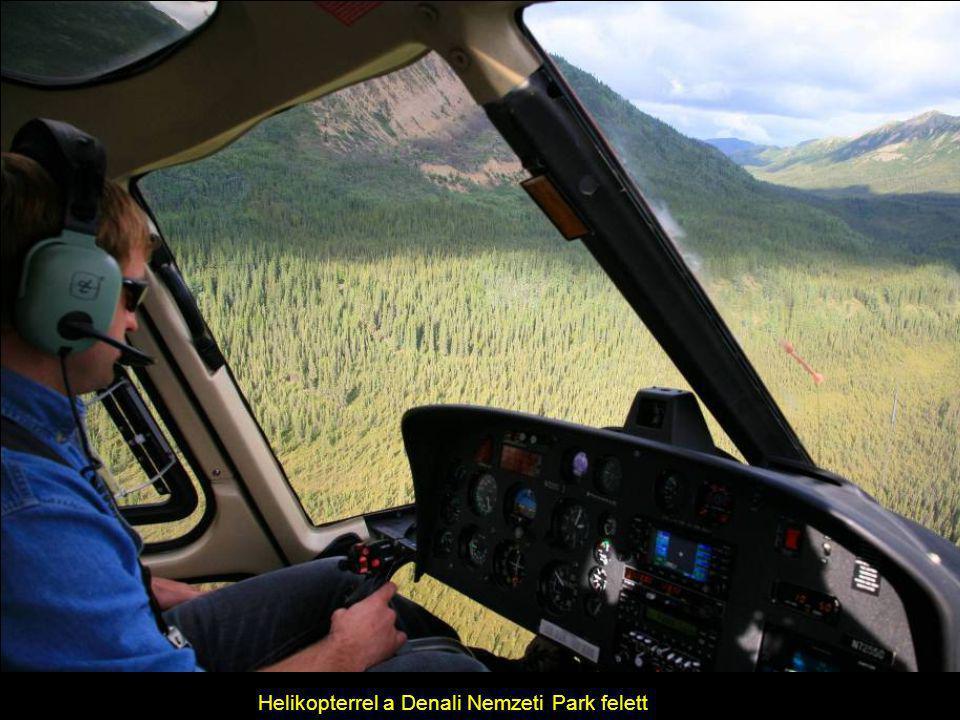 Helikopterrel a Denali Nemzeti Park felett