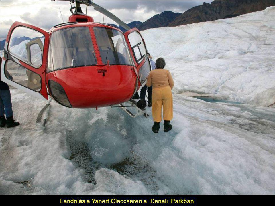 Landolás a Yanert Gleccseren a Denali Parkban