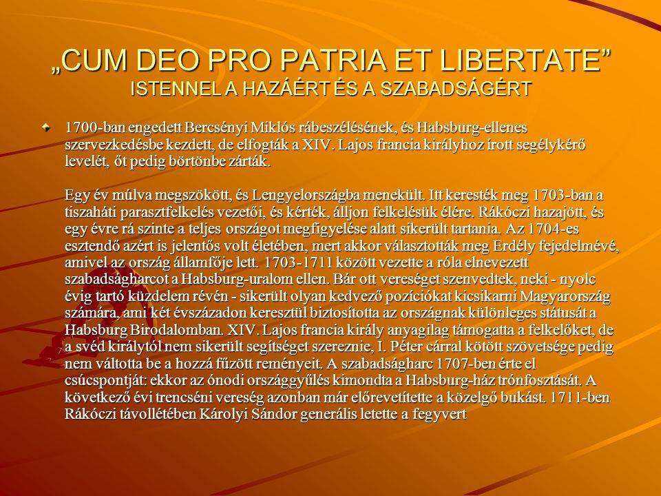 """: """" Minden igaz magyar, hazaszerető és édes országunk régi dicsőséges szabadságát óhajtó, egyházi és világi, nemes és nemtelen..."""