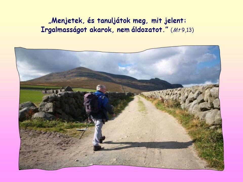 """""""Menjetek, és tanuljátok meg, mit jelent: Irgalmasságot akarok, nem áldozatot. (Mt 9,13)"""