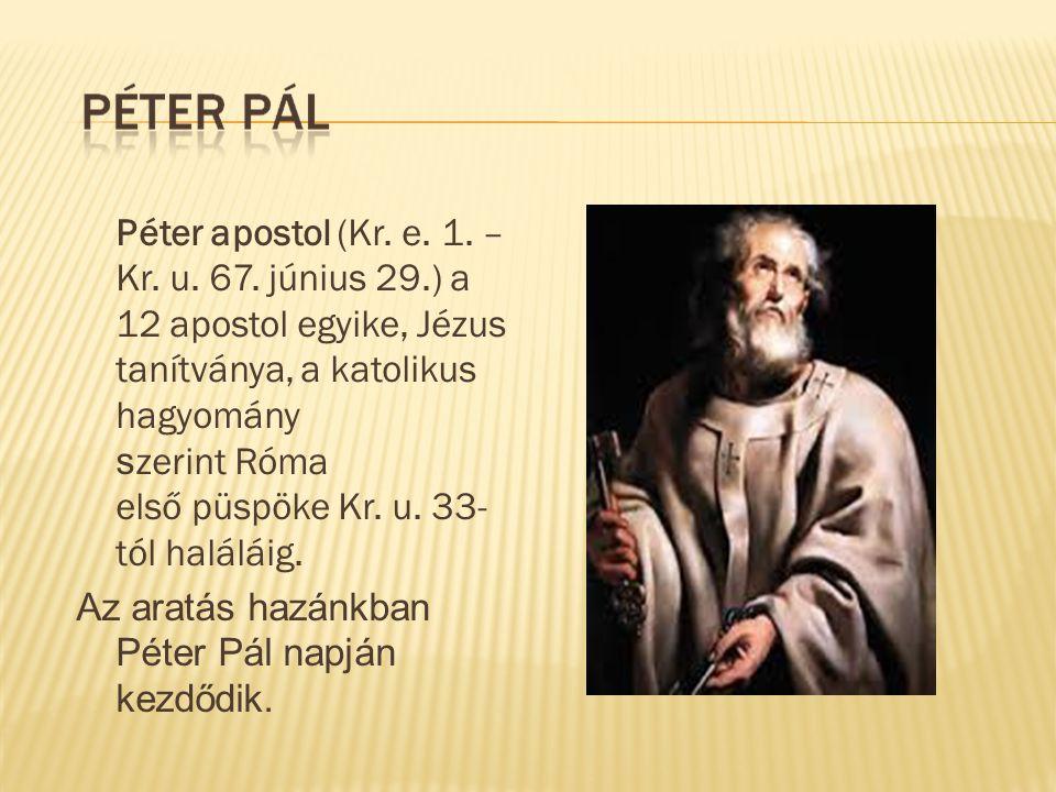 Péter apostol (Kr. e. 1. – Kr. u. 67. június 29.) a 12 apostol egyike, Jézus tanítványa, a katolikus hagyomány s zerint Róma első püspöke Kr. u. 33- t