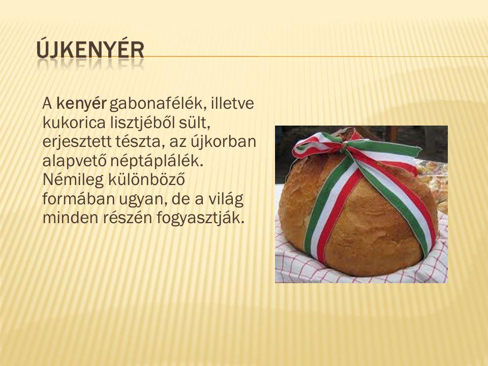 A kenyér gabonafélék, illetve kukorica lisztjéből sült, erjesztett tészta, az újkorban alapvető néptáplálék. Némileg különböző formában ugyan, de a vi