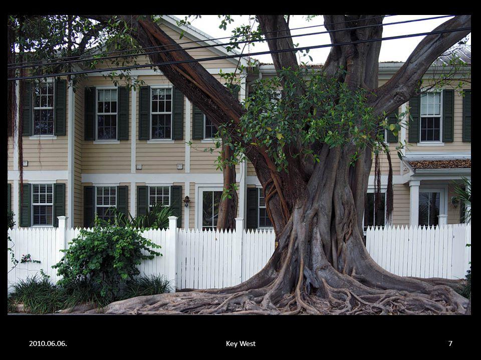 2010.06.06.Key West27 A festőállványon lévő kép kinagyítva.
