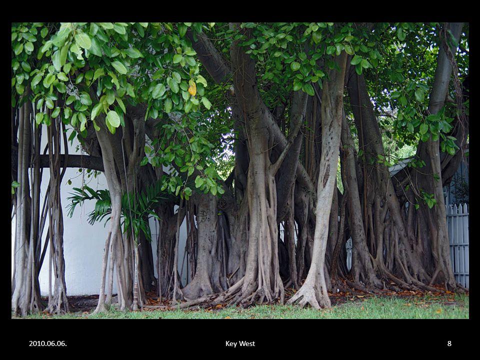 2010.06.06.Key West18 Ugye ismerős?