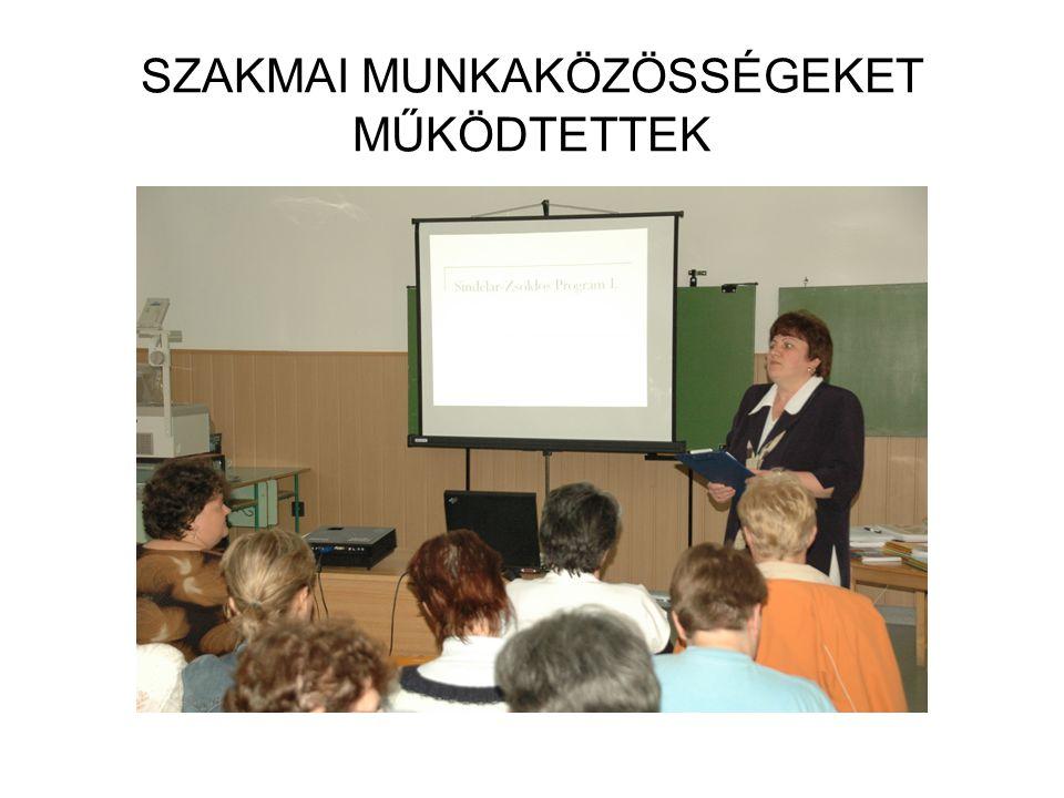 SZAKMAI MUNKAKÖZÖSSÉGEKET MŰKÖDTETTEK