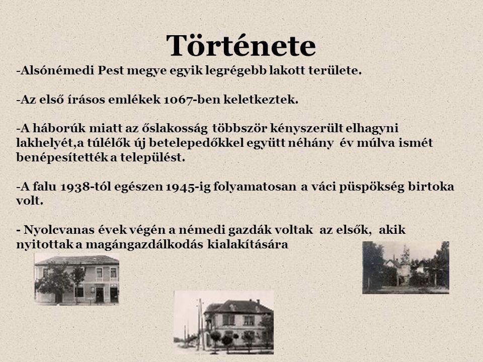 Története -Alsónémedi Pest megye egyik legrégebb lakott területe. -Az első írásos emlékek 1067-ben keletkeztek. -A háborúk miatt az őslakosság többszö