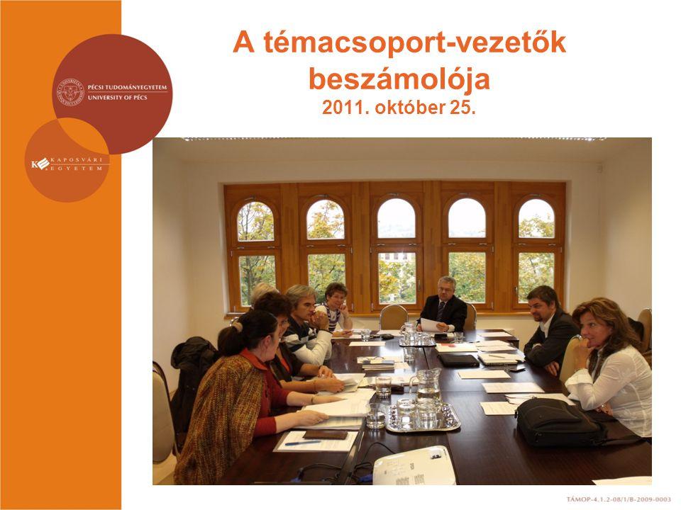 A témacsoport-vezetők beszámolója 2011. október 25.