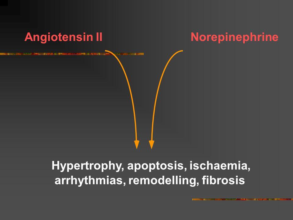NorepinephrineAngiotensin II Hypertrophy, apoptosis, ischaemia, arrhythmias, remodelling, fibrosis