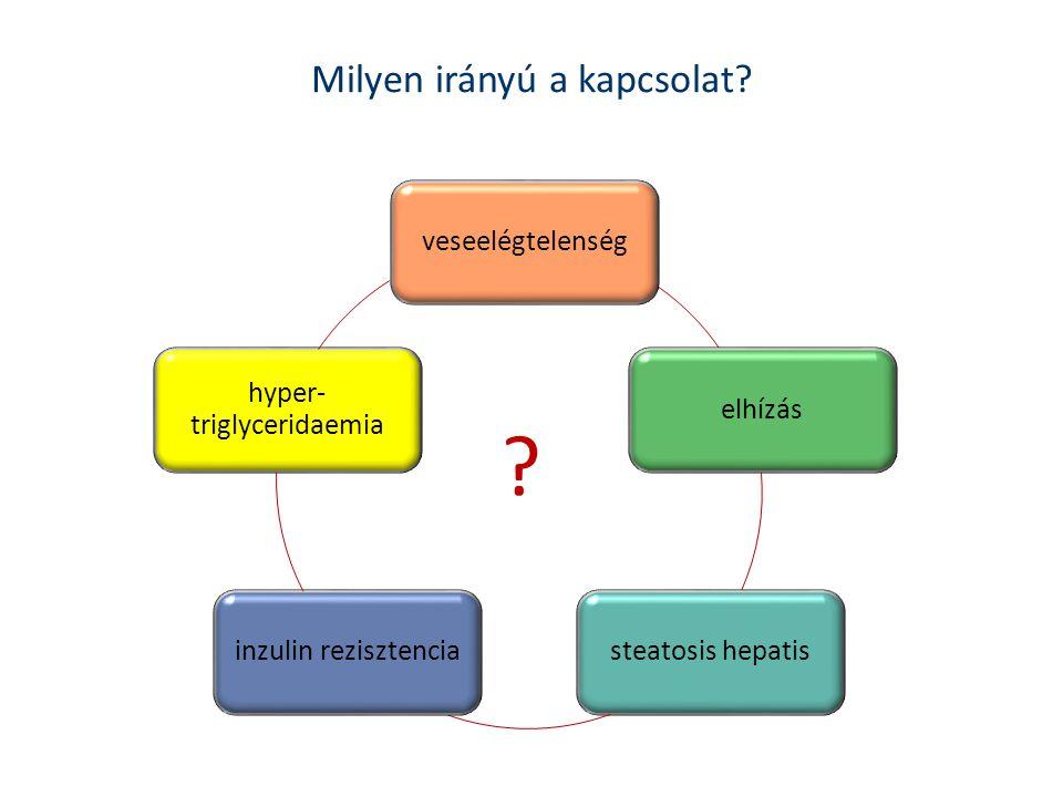 Milyen irányú a kapcsolat? elhízás steatosis hepatis inzulin rezisztencia hyper- triglyceridaemia veseelégtelenség ?
