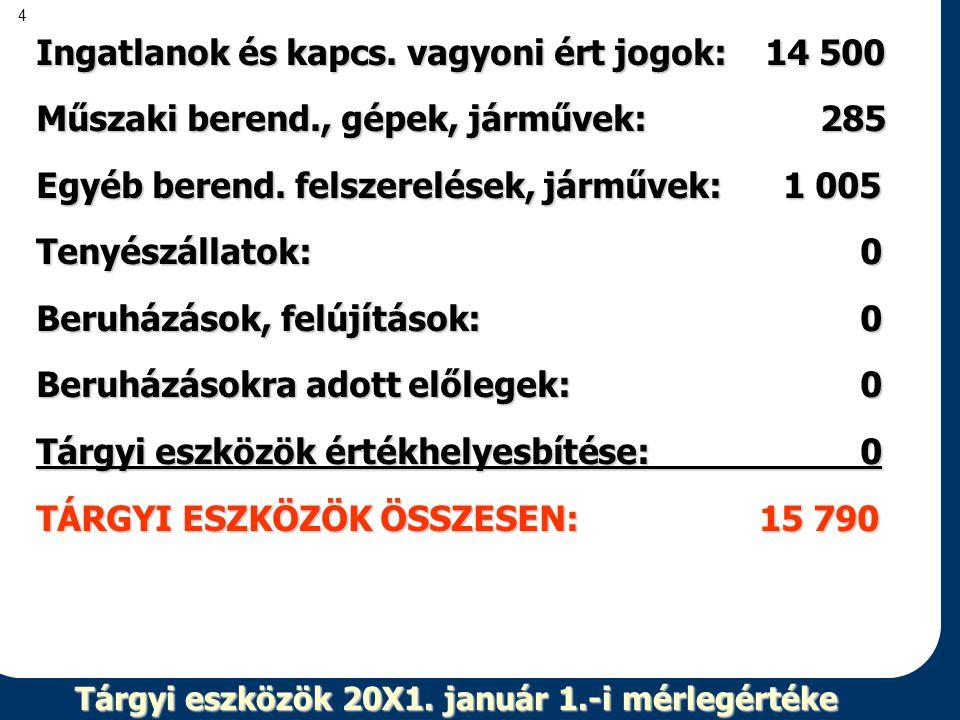 4 Tárgyi eszközök 20X1. január 1.-i mérlegértéke Ingatlanok és kapcs. vagyoni ért jogok: 14 500 Műszaki berend., gépek, járművek: 285 Egyéb berend. fe